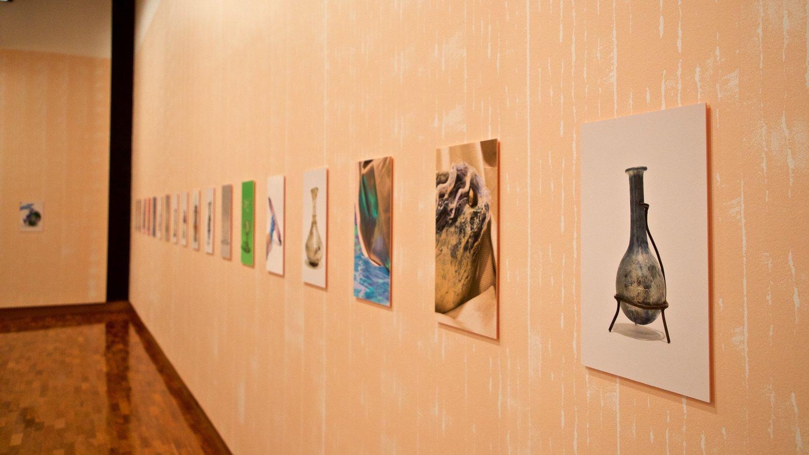 Museo de arte Ian Potter ofreciendo vistas interiores y arte
