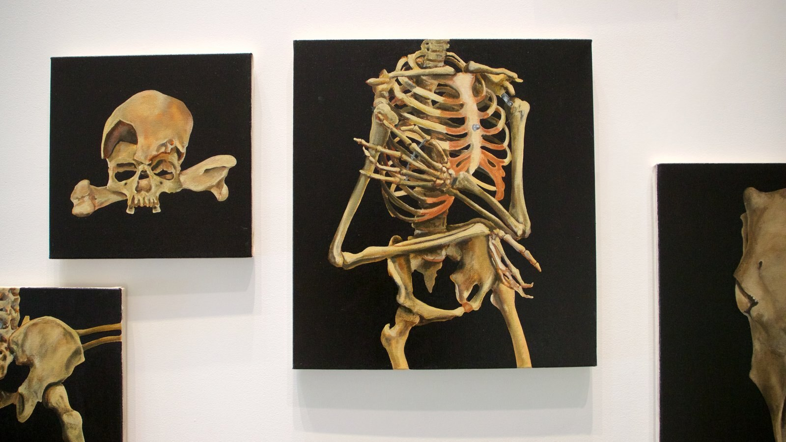 Museo de arte Ian Potter ofreciendo arte