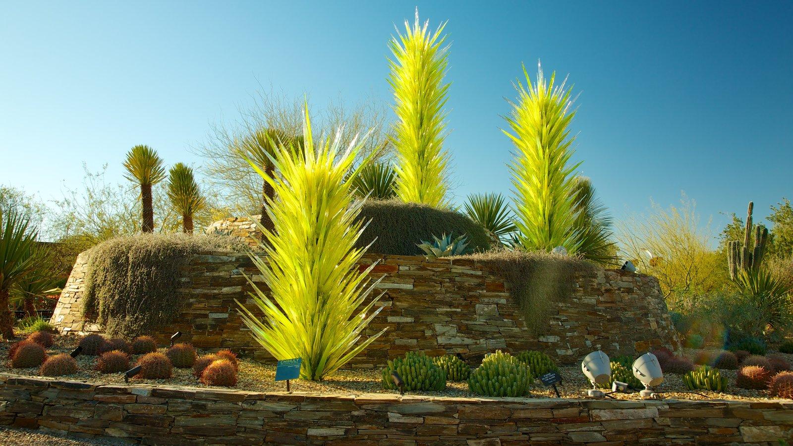 Desert Botanical Garden mostrando um parque