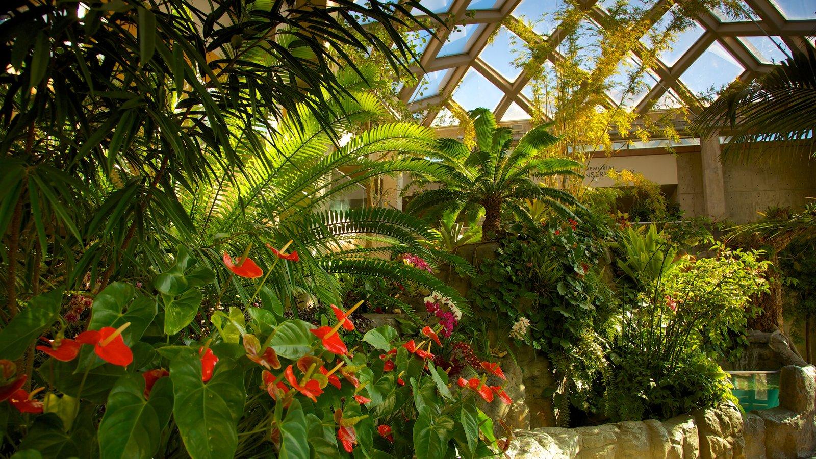 Jardim Botânico de Denver mostrando um jardim, vistas internas e flores