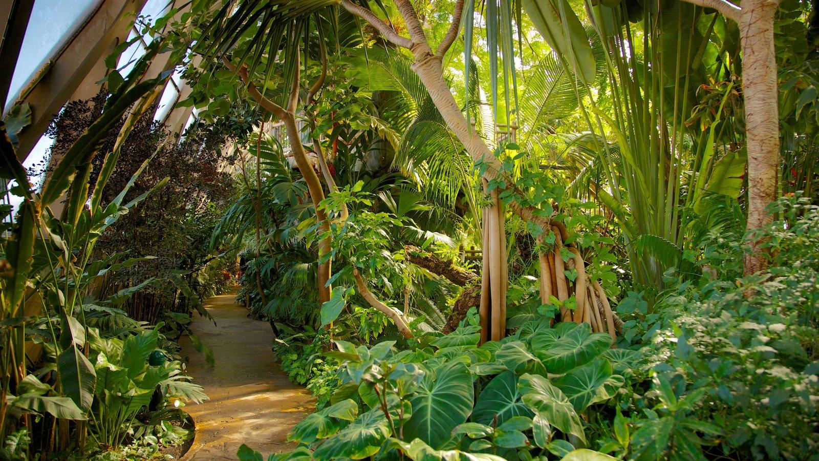 Jardim Botânico de Denver que inclui cenas tropicais e um parque