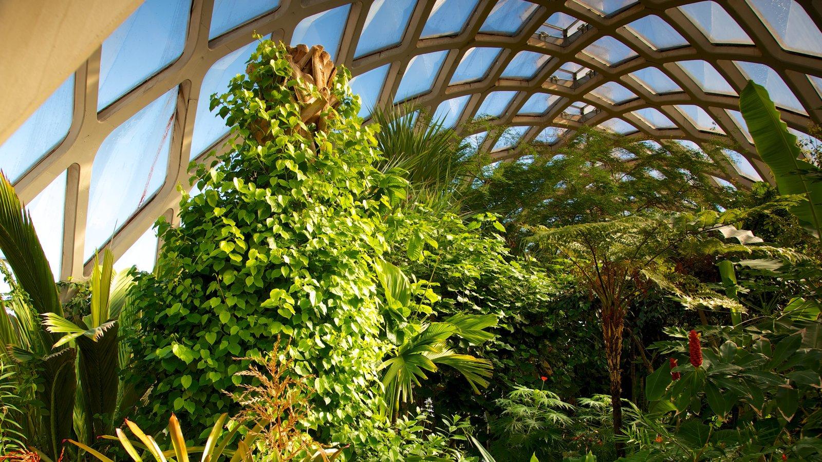 Jardim Botânico de Denver mostrando um parque e vistas internas