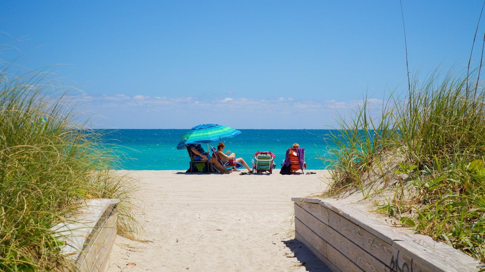 Hollywood North Beach Park mostrando uma praia e paisagens litorâneas assim como um pequeno grupo de pessoas