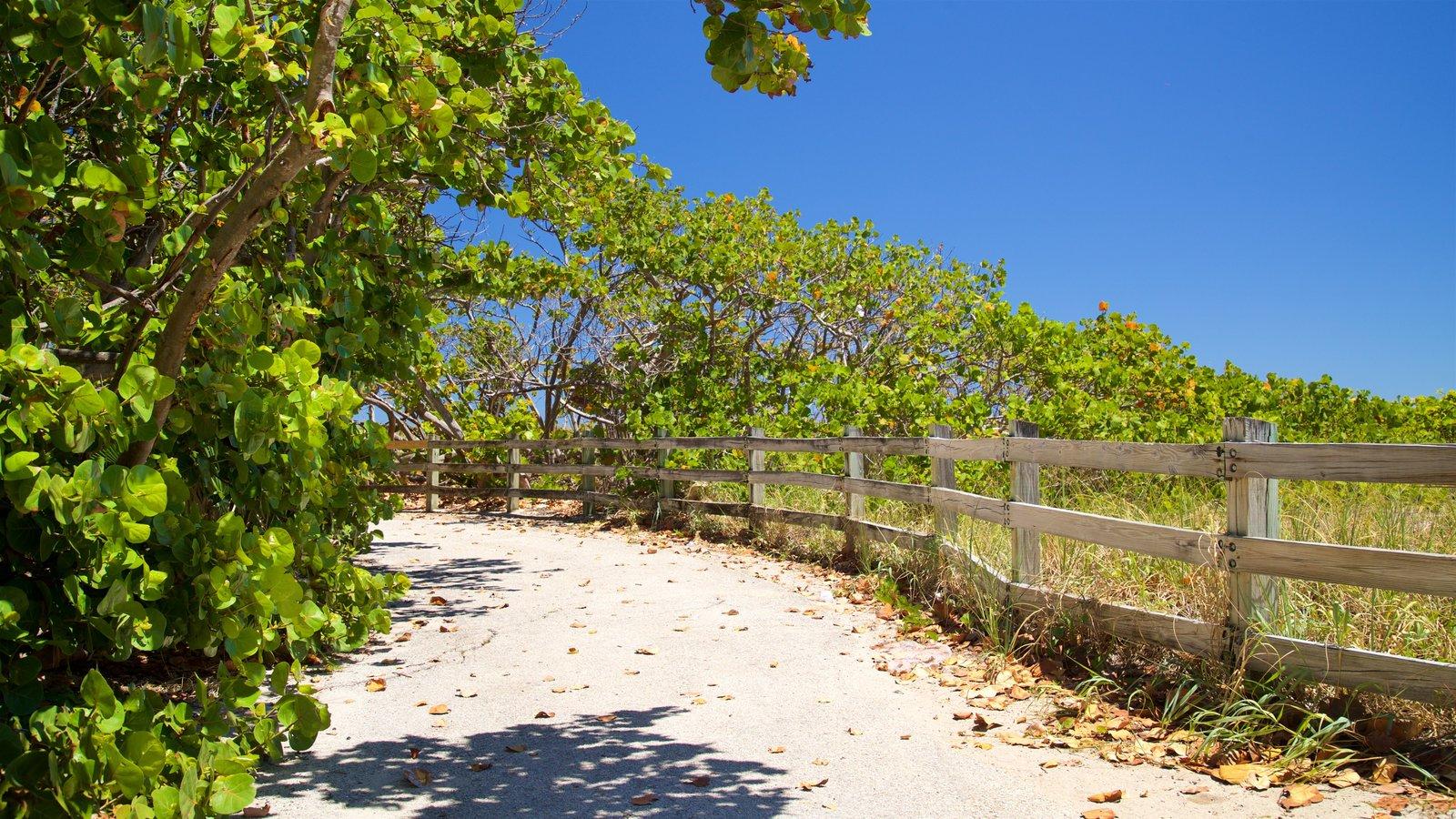 Hollywood North Beach Park que inclui um parque e uma praia de areia