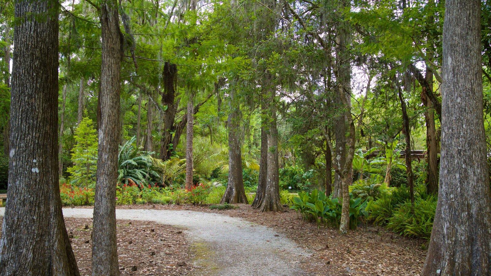Parque regional Eureka Springs ofreciendo un jardín