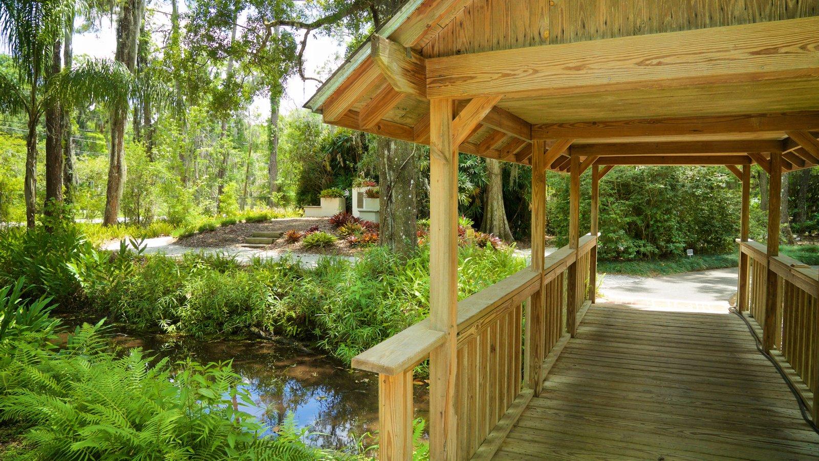 Parque regional Eureka Springs mostrando un río o arroyo y un puente