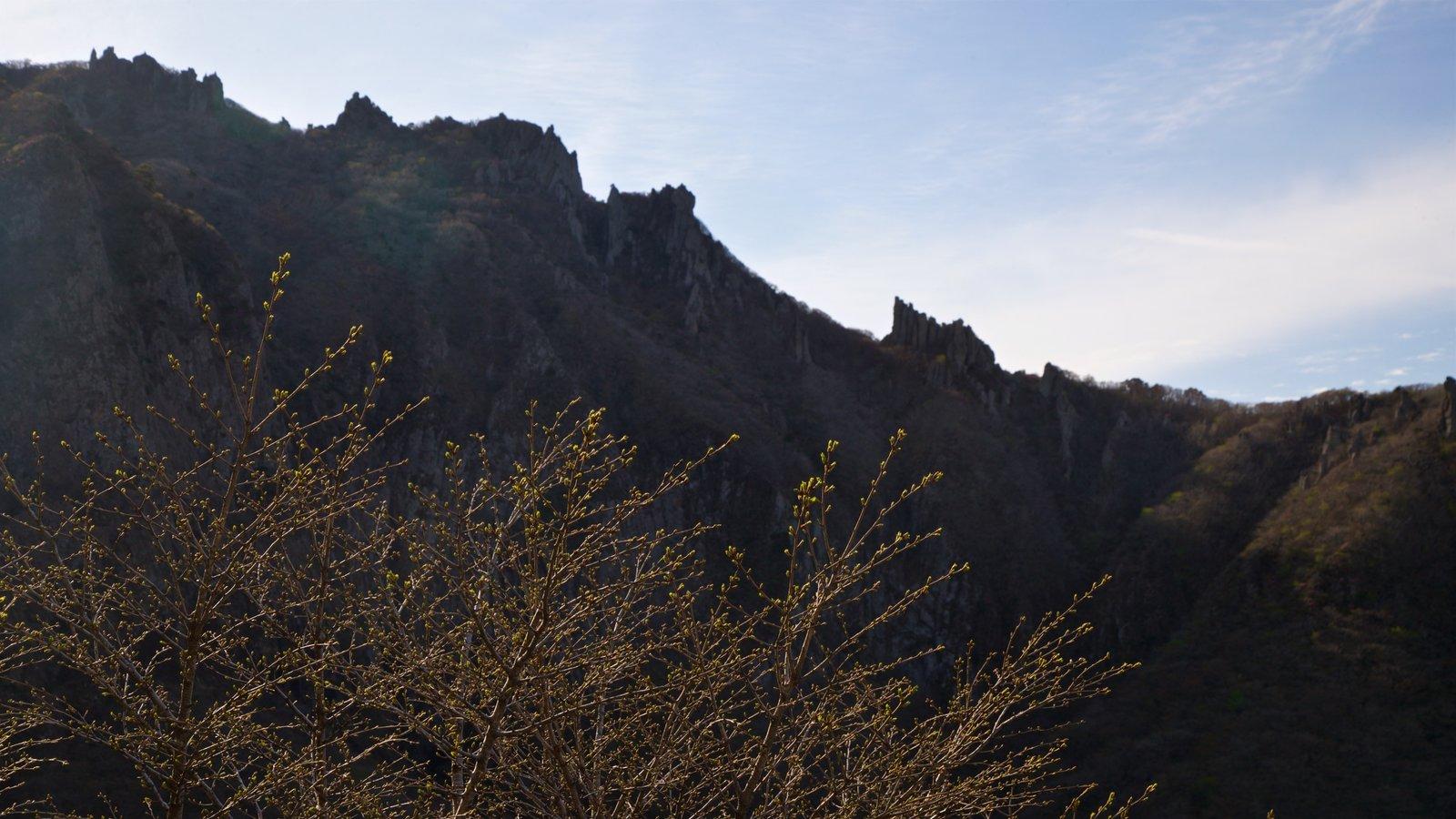 Parque Nacional de Hallasan que incluye escenas tranquilas