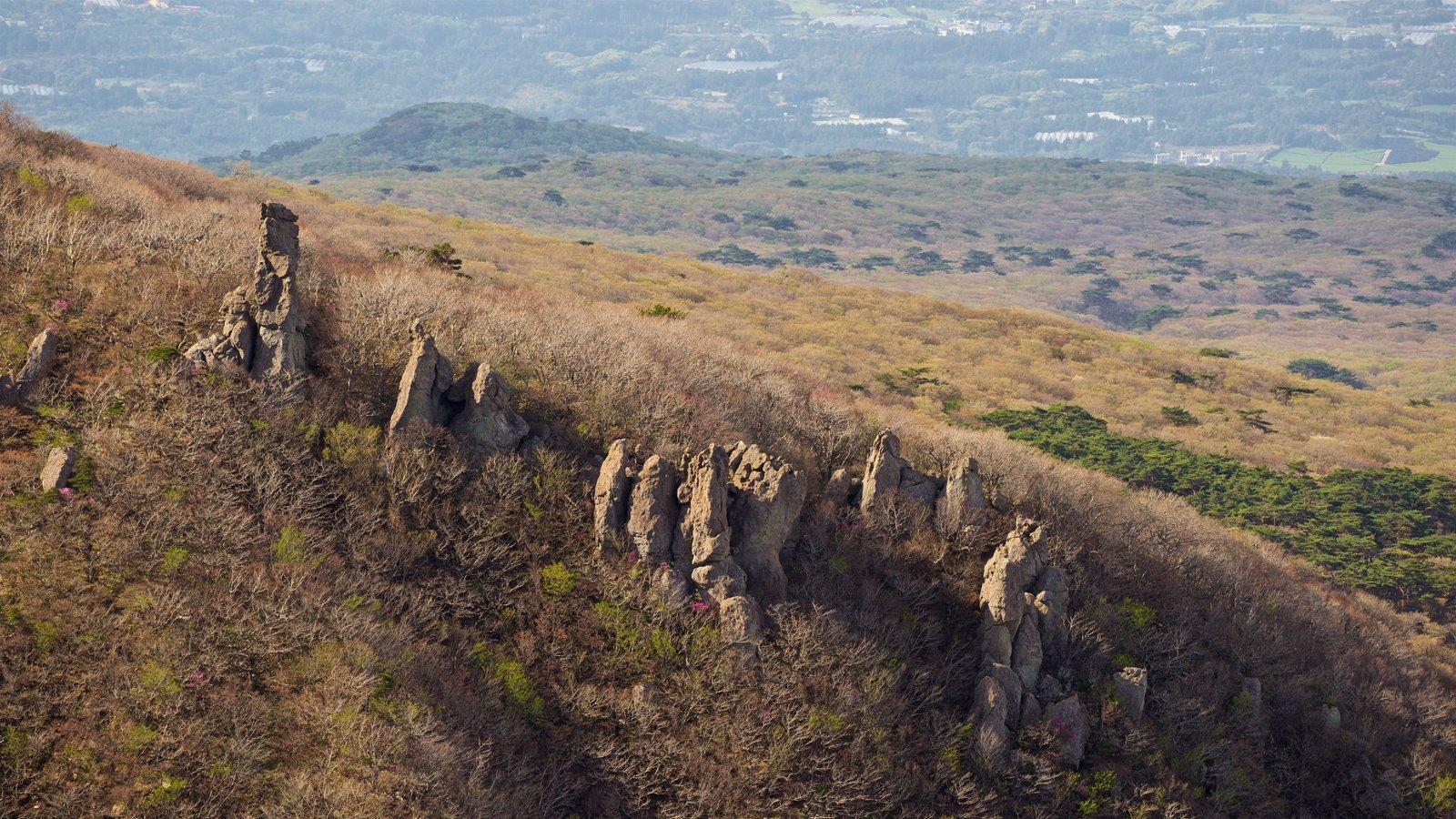 Parque Nacional de Hallasan que incluye escenas tranquilas y vistas de paisajes