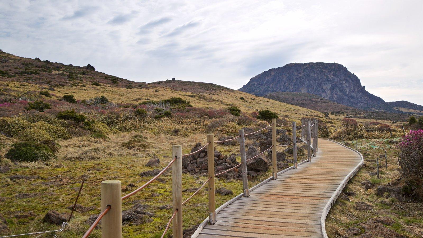 Parque Nacional de Hallasan que incluye vistas de paisajes y escenas tranquilas