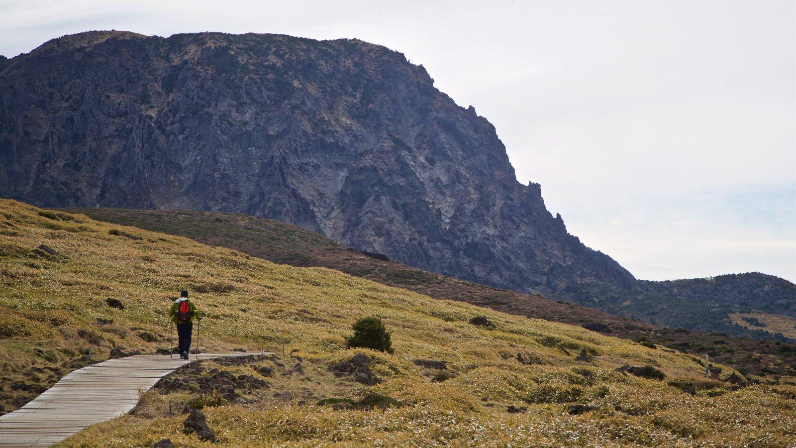 Parque Nacional de Hallasan mostrando senderismo o caminata, vistas de paisajes y escenas tranquilas