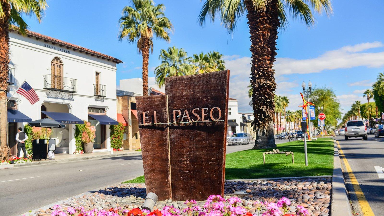 Palm Springs que inclui flores e sinalização