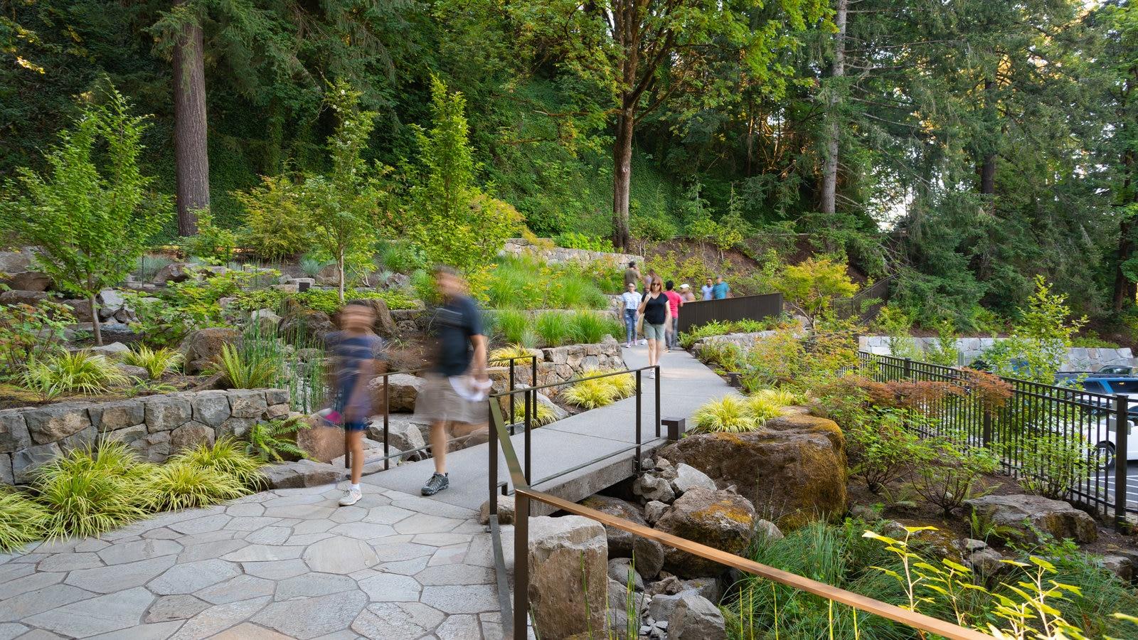 Jardín Japonés de Portland mostrando un parque