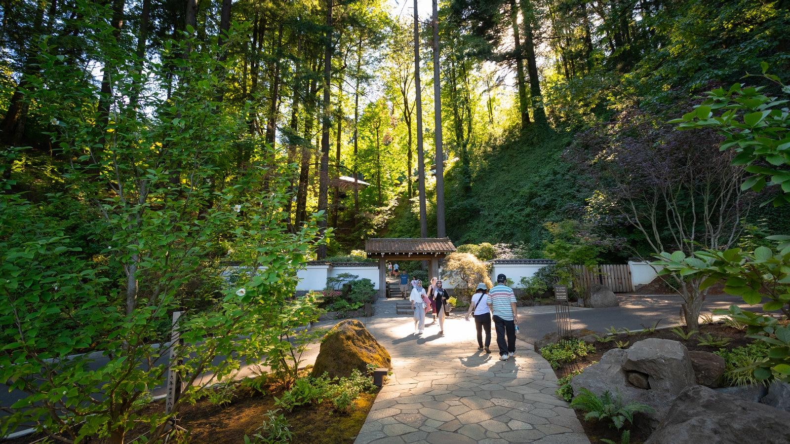 Jardín Japonés de Portland ofreciendo un jardín y escenas forestales