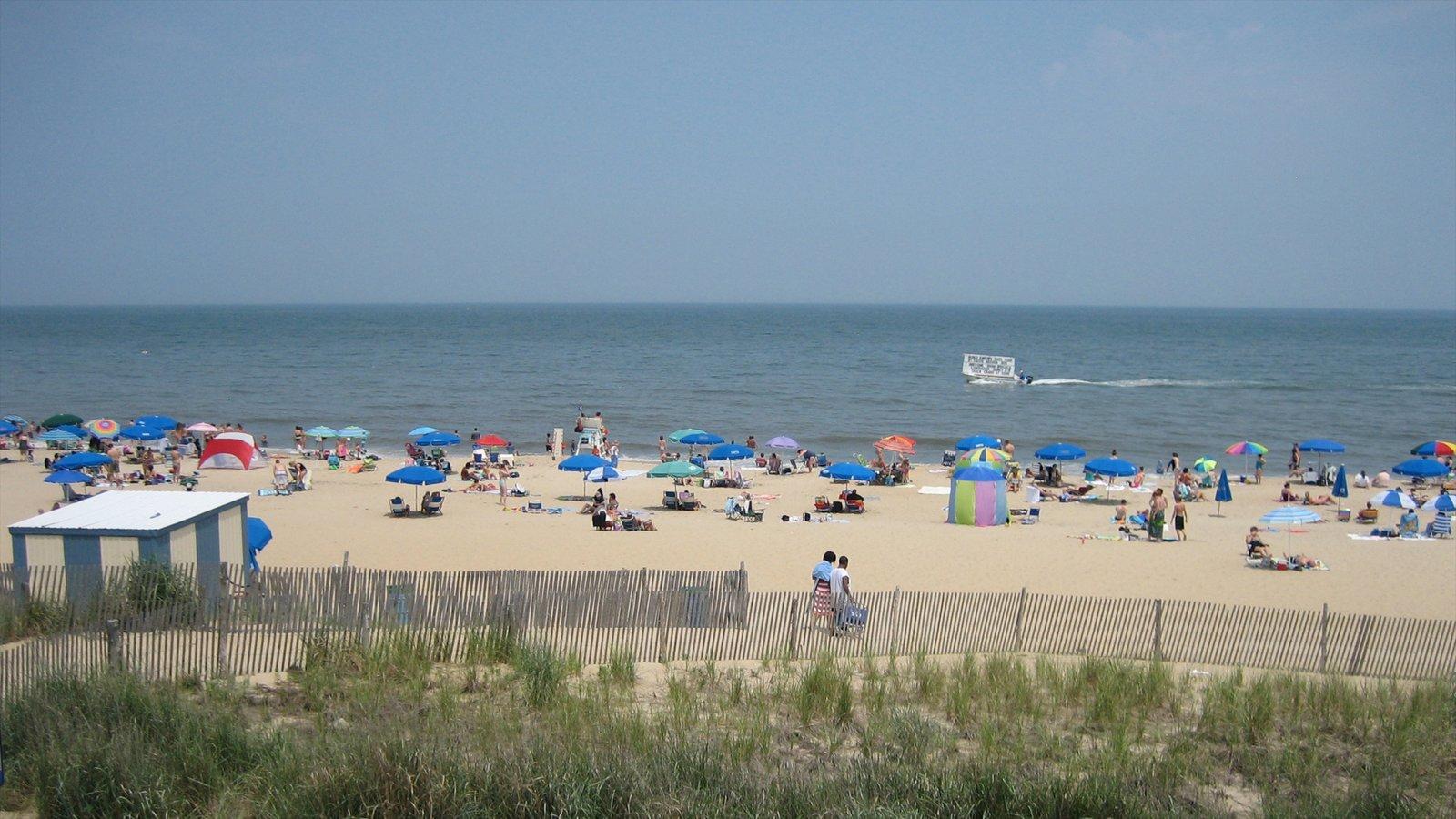 Rehoboth Beach mostrando escenas tropicales y una playa de arena