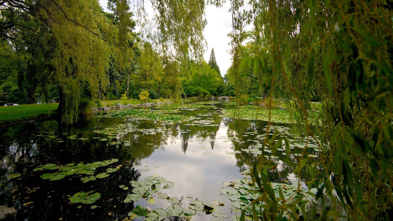 Queenstown Gardens which includes a pond, landscape views and a garden