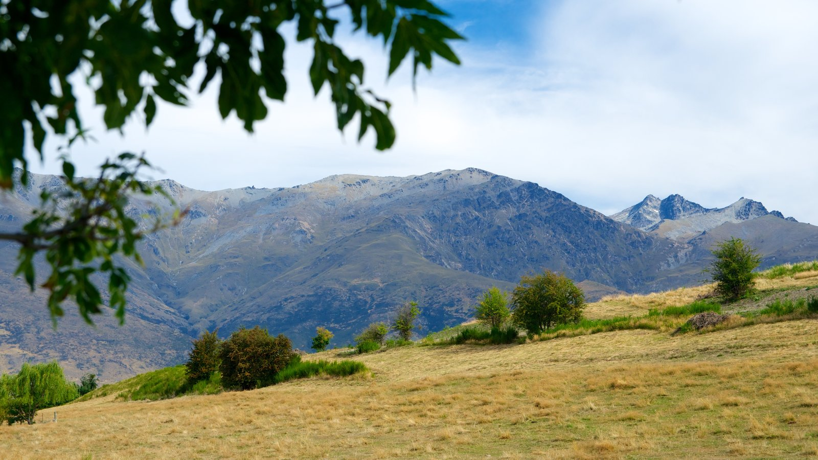 Arrowtown which includes mountains and landscape views