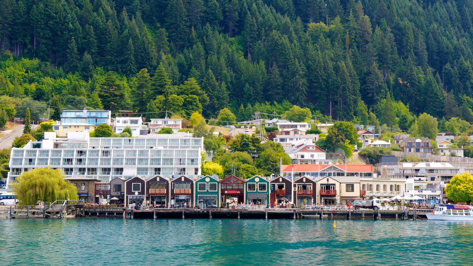 Steamer Wharf which includes a bay or harbor, a coastal town and forests
