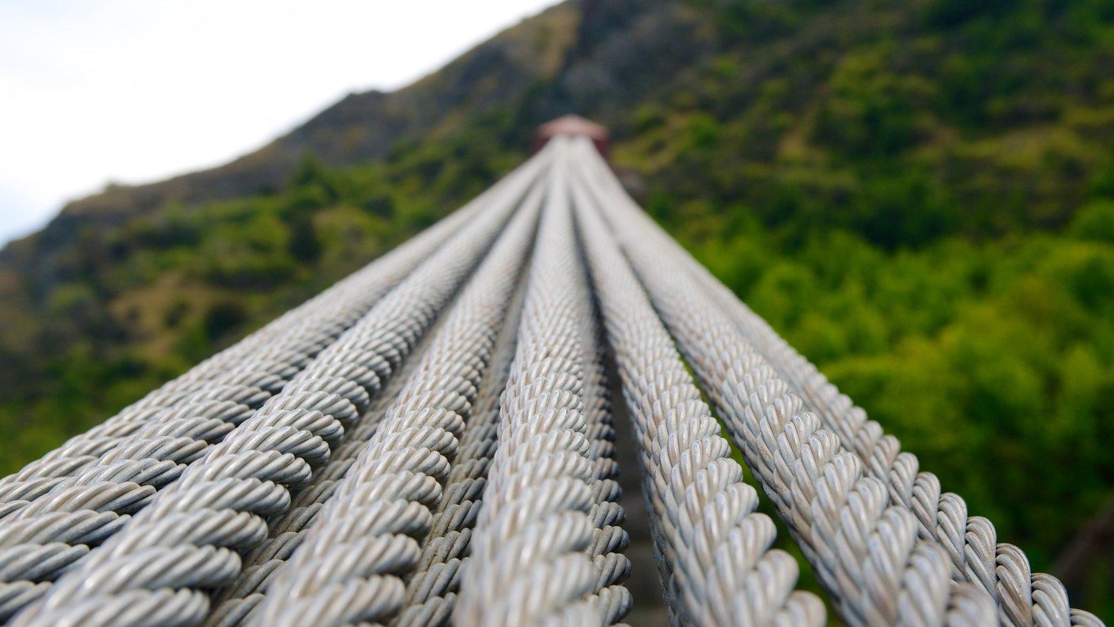 Kawarau Suspension Bridge featuring a suspension bridge or treetop walkway