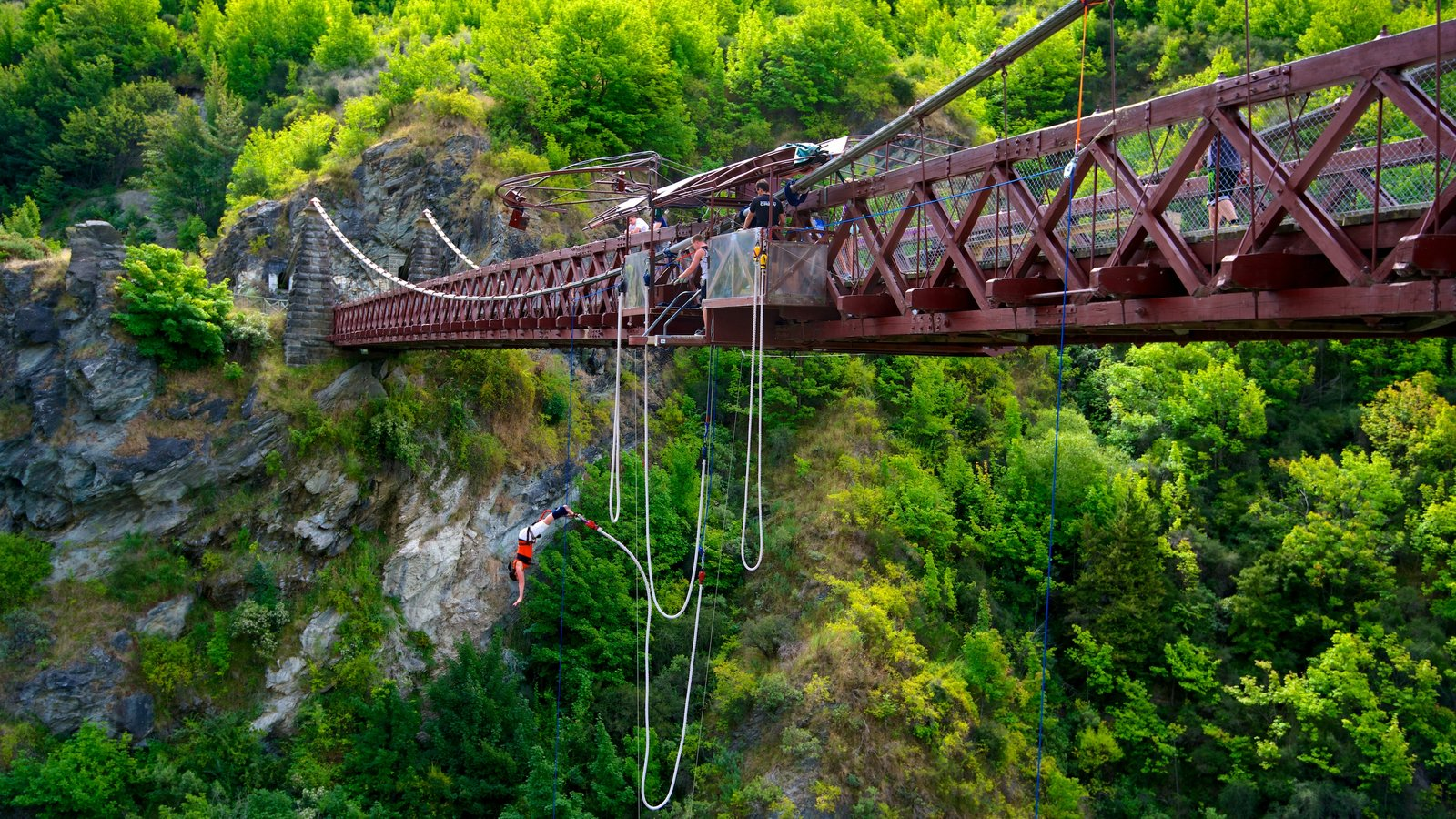 Kawarau Suspension Bridge which includes a suspension bridge or treetop walkway and bungee jumping