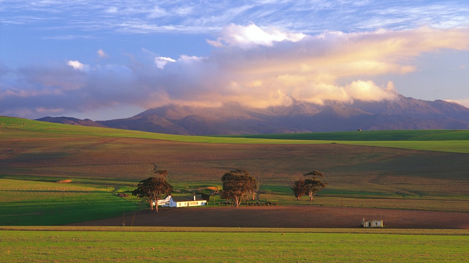 Caledon showing tranquil scenes and landscape views