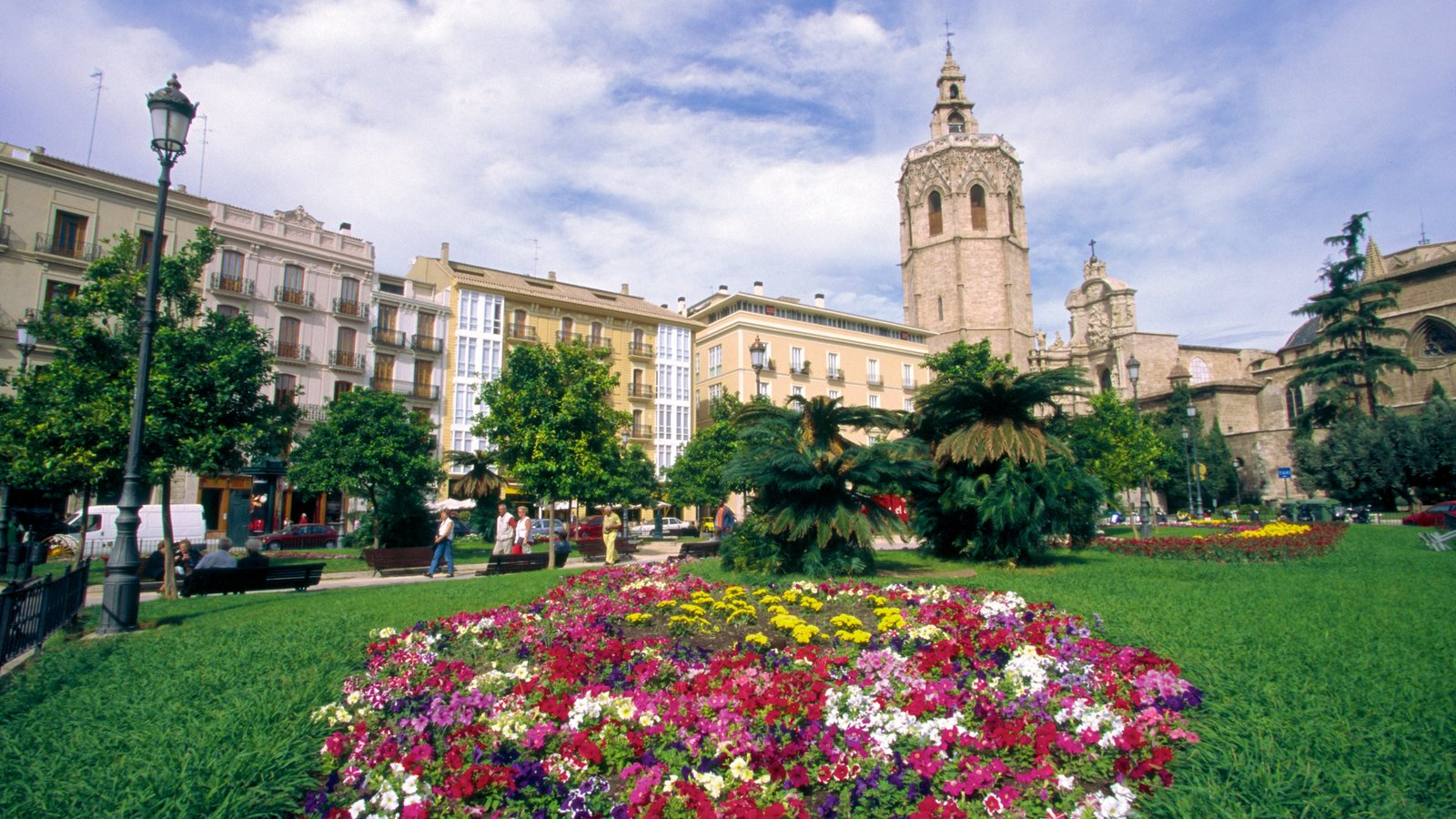 Plaza de la Reina showing a church or cathedral, flowers and a city
