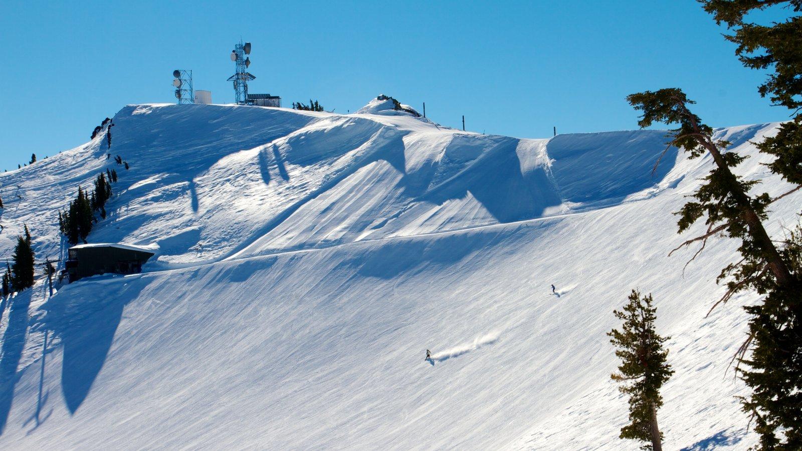 Alpine Meadows Ski Resort mostrando esqui na neve, montanhas e neve