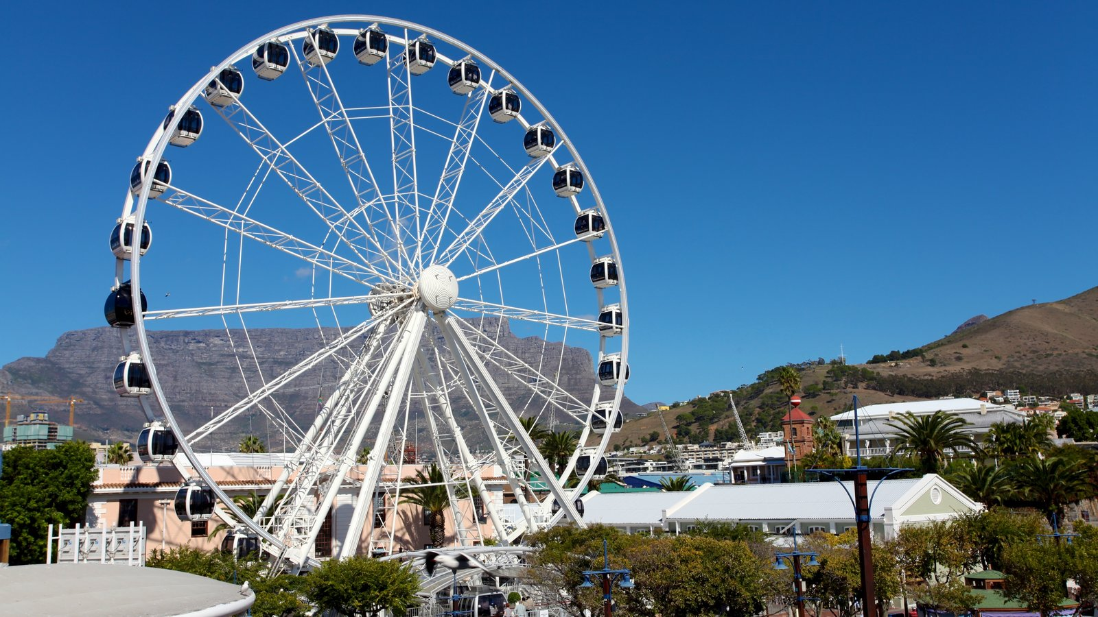 Victoria and Alfred Waterfront showing rides and modern architecture