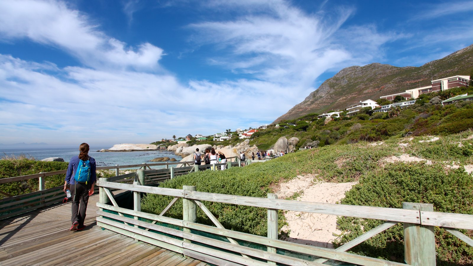 Boulders Beach which includes tropical scenes, hiking or walking and rocky coastline