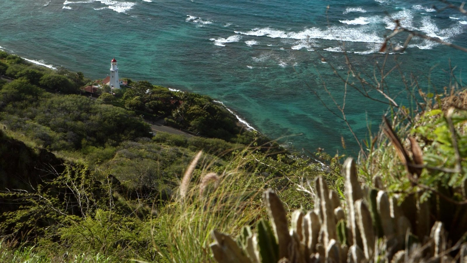 Diamond Head which includes general coastal views, a lighthouse and landscape views