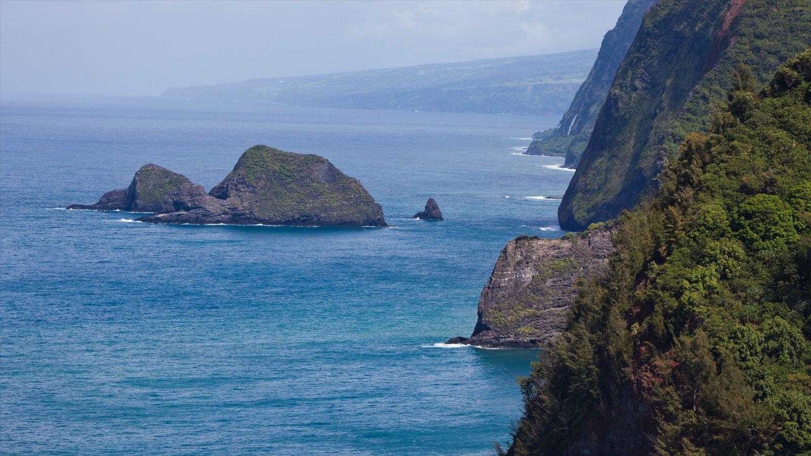 Hawai que incluye vistas de paisajes y costa escarpada