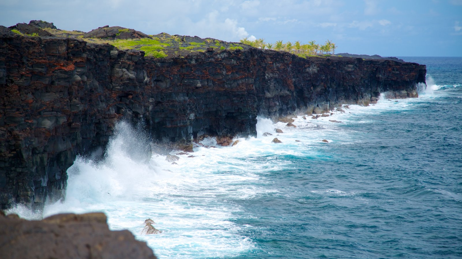 Hawaii Volcanoes National Park que inclui paisagem, cenas tropicais e litoral acidentado