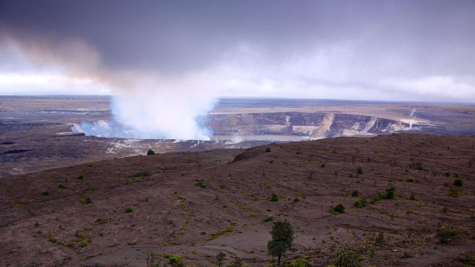 Hawaii Volcanoes National Park caracterizando paisagem e um jardim