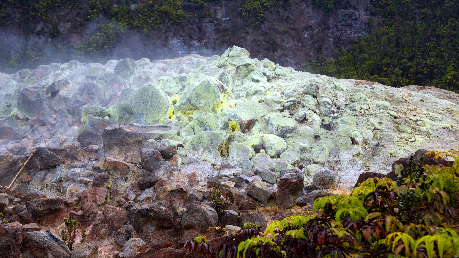 Hawaii Volcanoes National Park mostrando paisagem