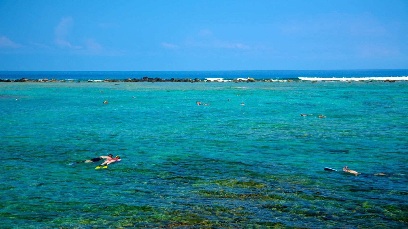 Kahalu\'u Beach Park caracterizando paisagem, recifes coloridos e snorkel