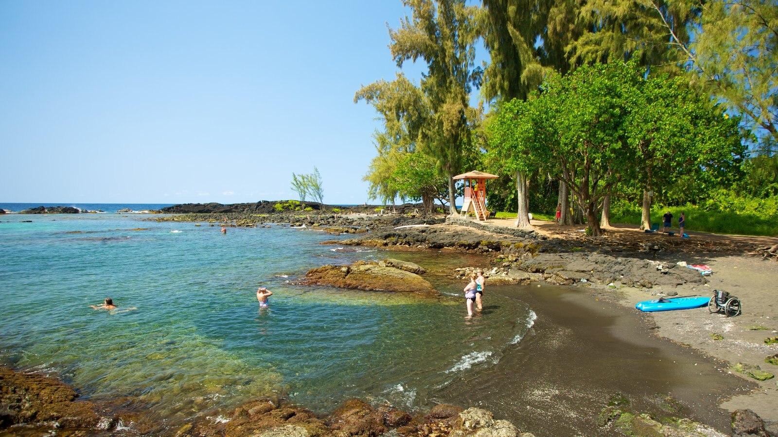Richardson\'s Ocean Park mostrando paisagem e uma praia