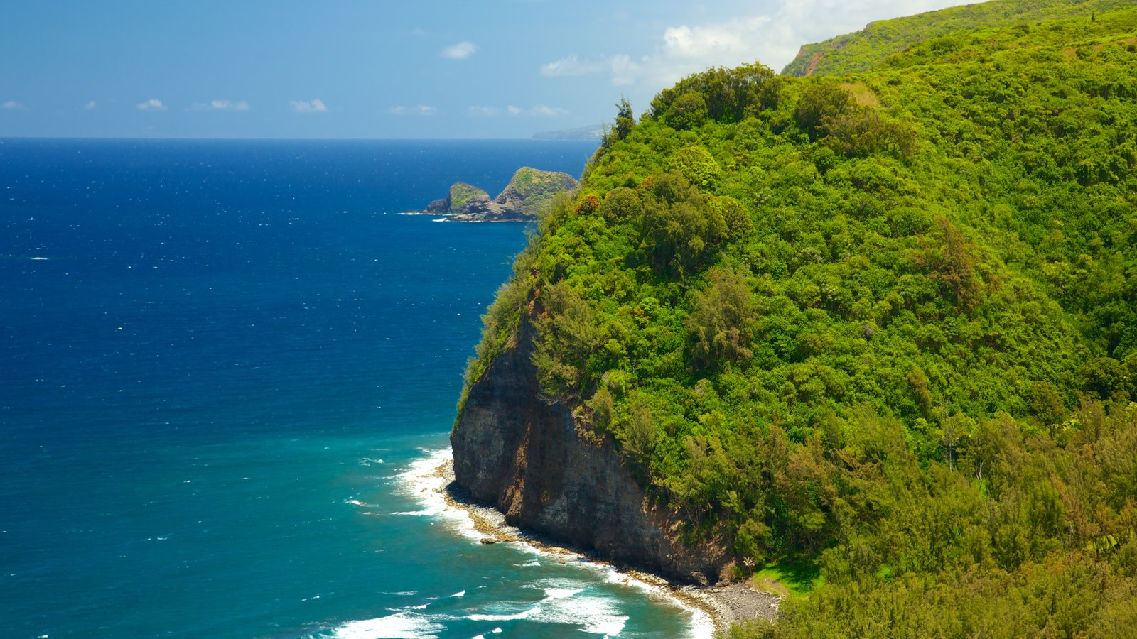 Pololu Valley Overlook showing landscape views and general coastal views