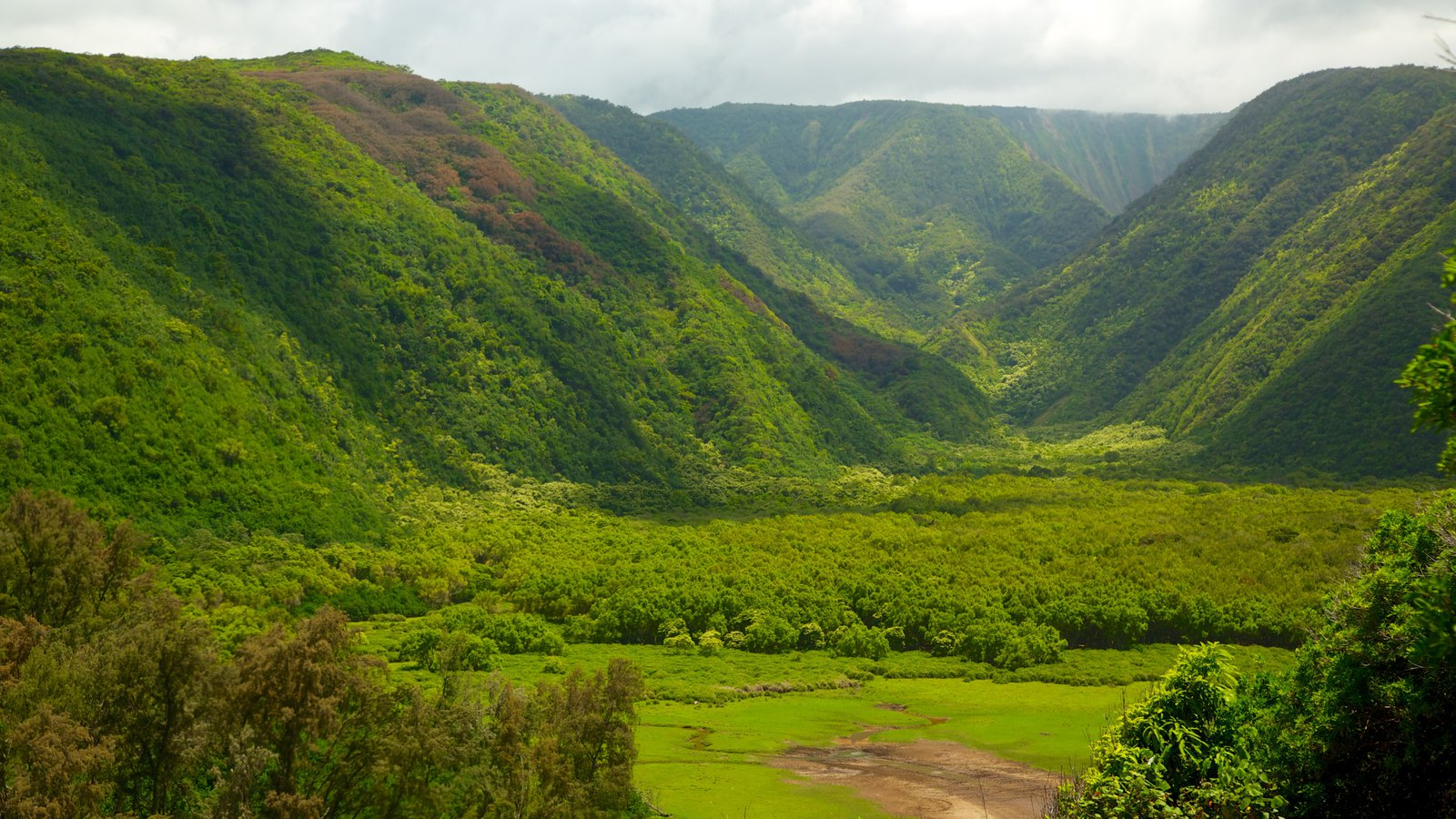 Pololu Valley Overlook showing landscape views and mountains