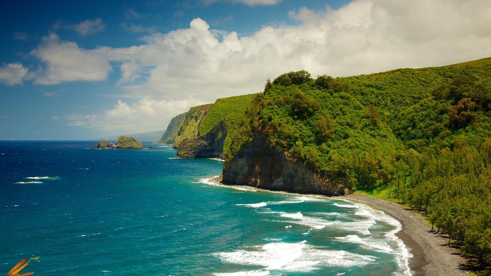 Panorámica de Pololu Valley que incluye vistas generales de la costa y vistas de paisajes