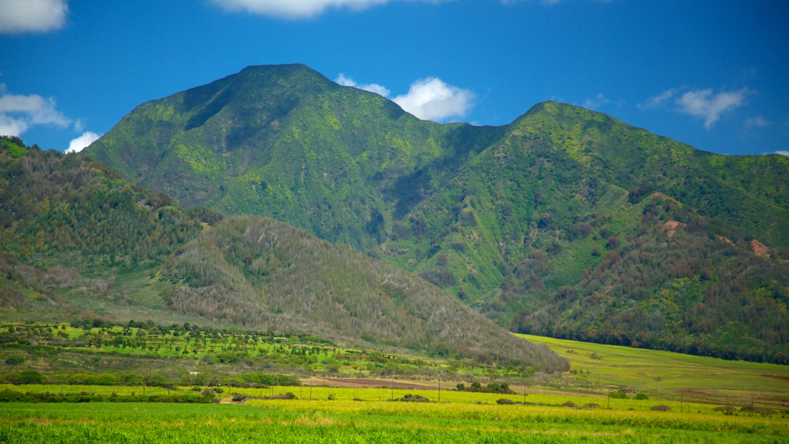 Mountain Pictures: View Images of Hawaii