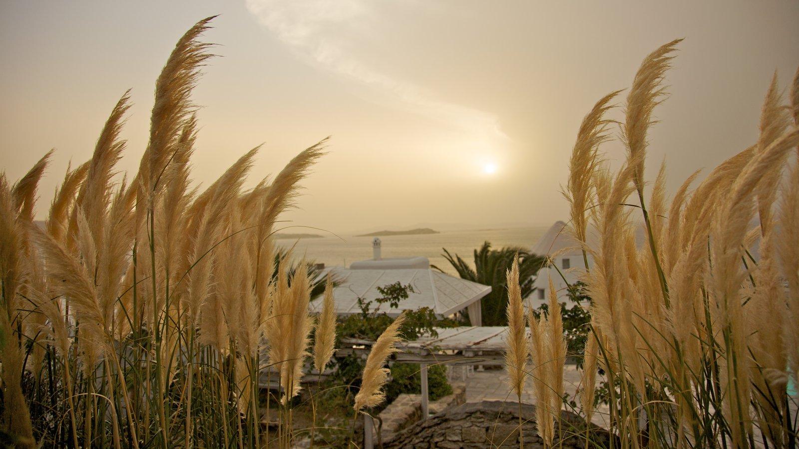Mykonos Town que inclui um pôr do sol