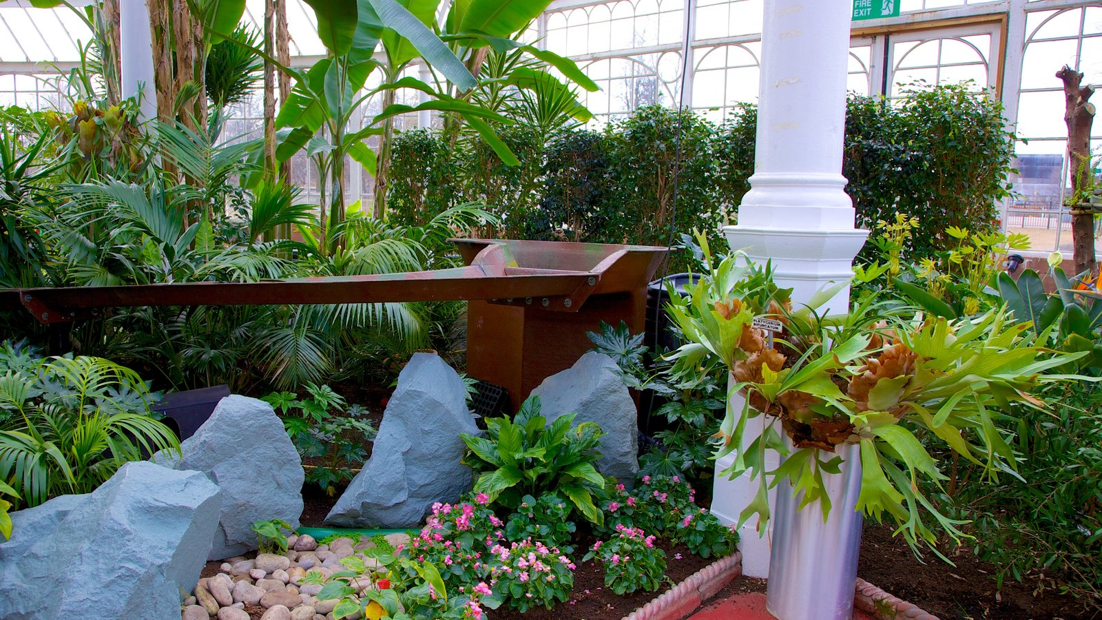 people u0027s palace and winter gardens pictures view photos u0026 images