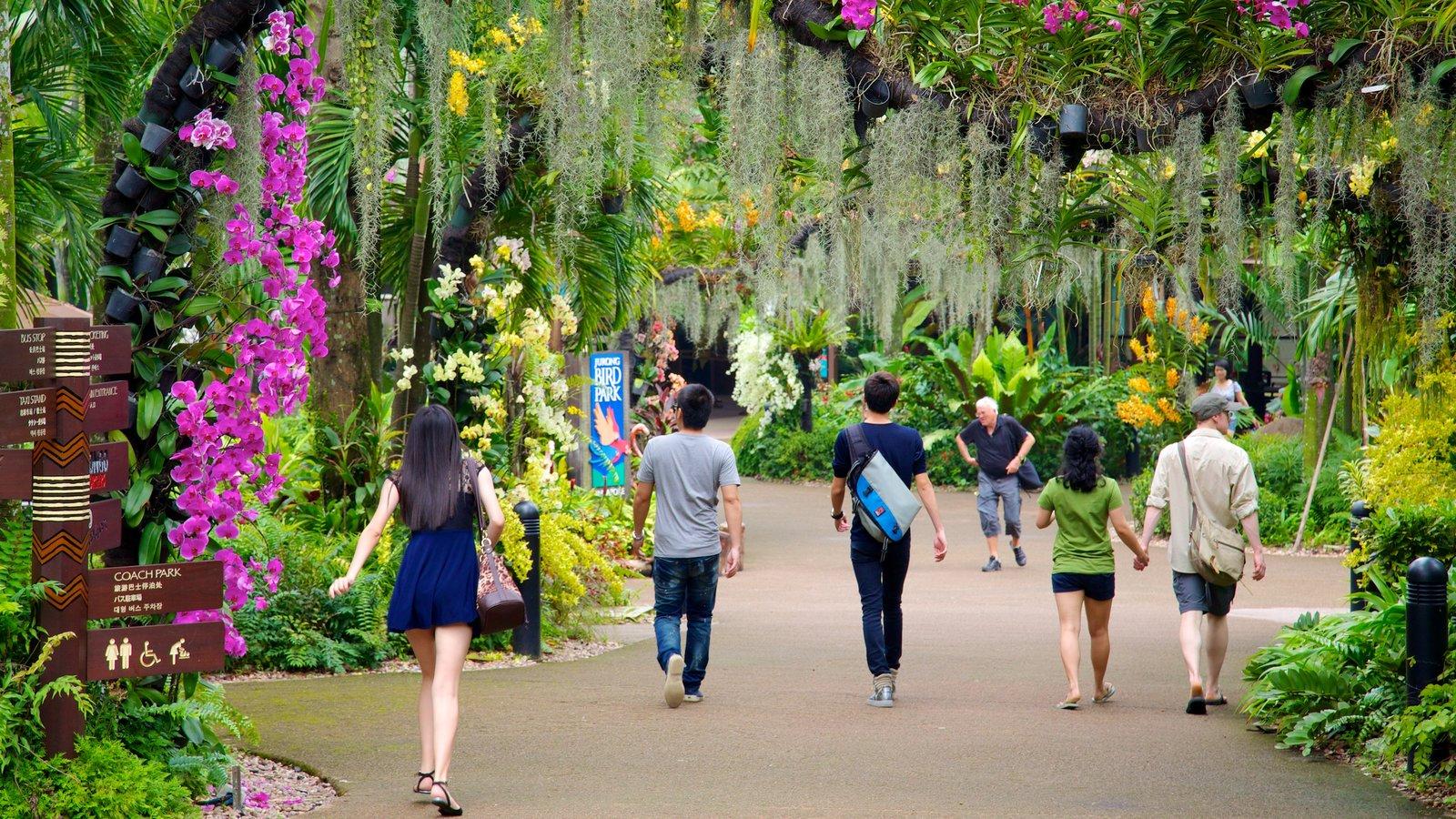 Singapore | expedia.com