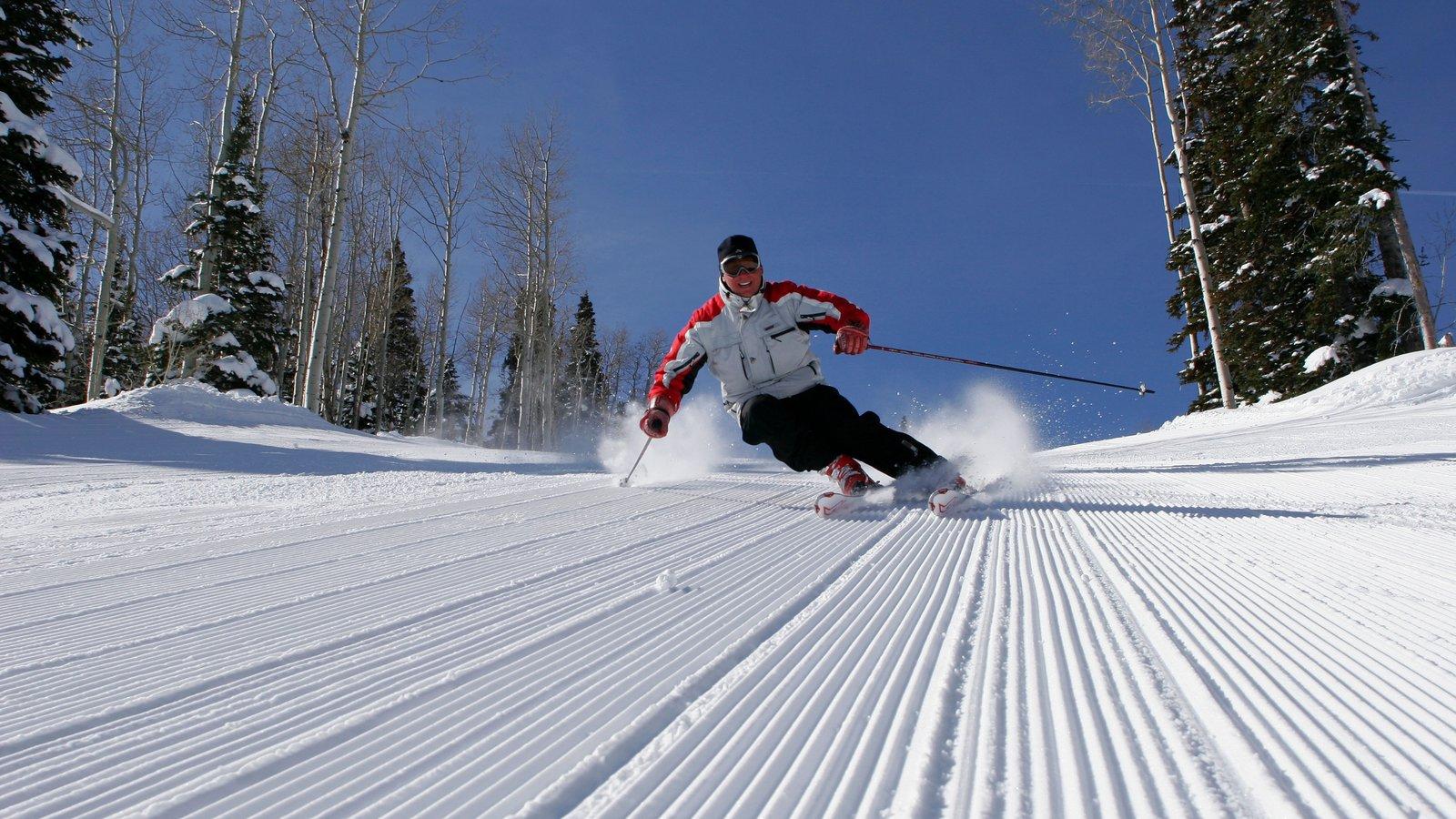 Park City Mountain Resort que inclui esqui na neve, montanhas e um jardim