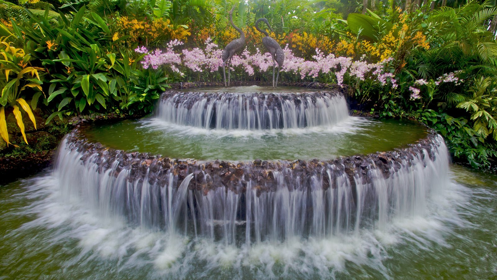 Waterfall At Singapore Botanic Garden The Is A Major Visitor Attraction In