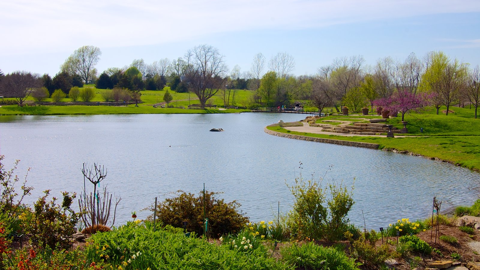 Overland Park Arboretum And Botanical Gardens Showing A Lake Or Waterhole,  A Park And Landscape