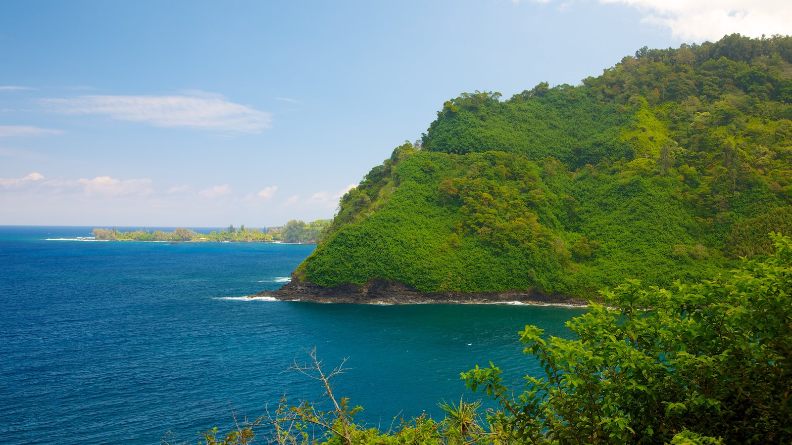 Isla de Maui que incluye escenas tropicales, vistas generales de la costa y montañas