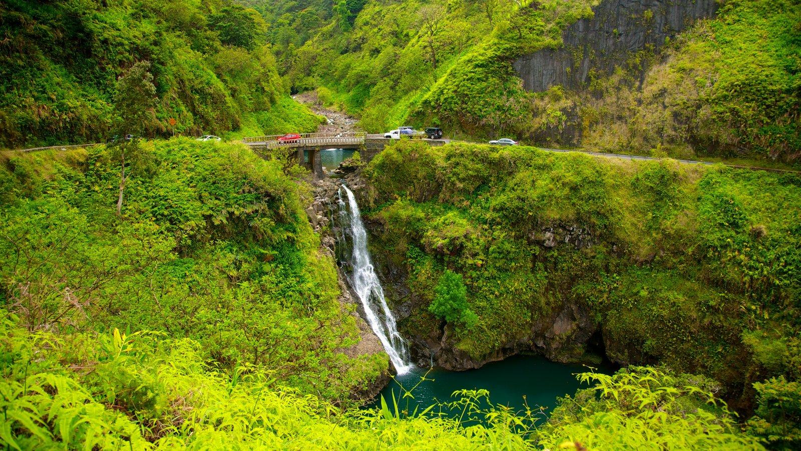 Maui mostrando uma cascata, montanhas e paisagem