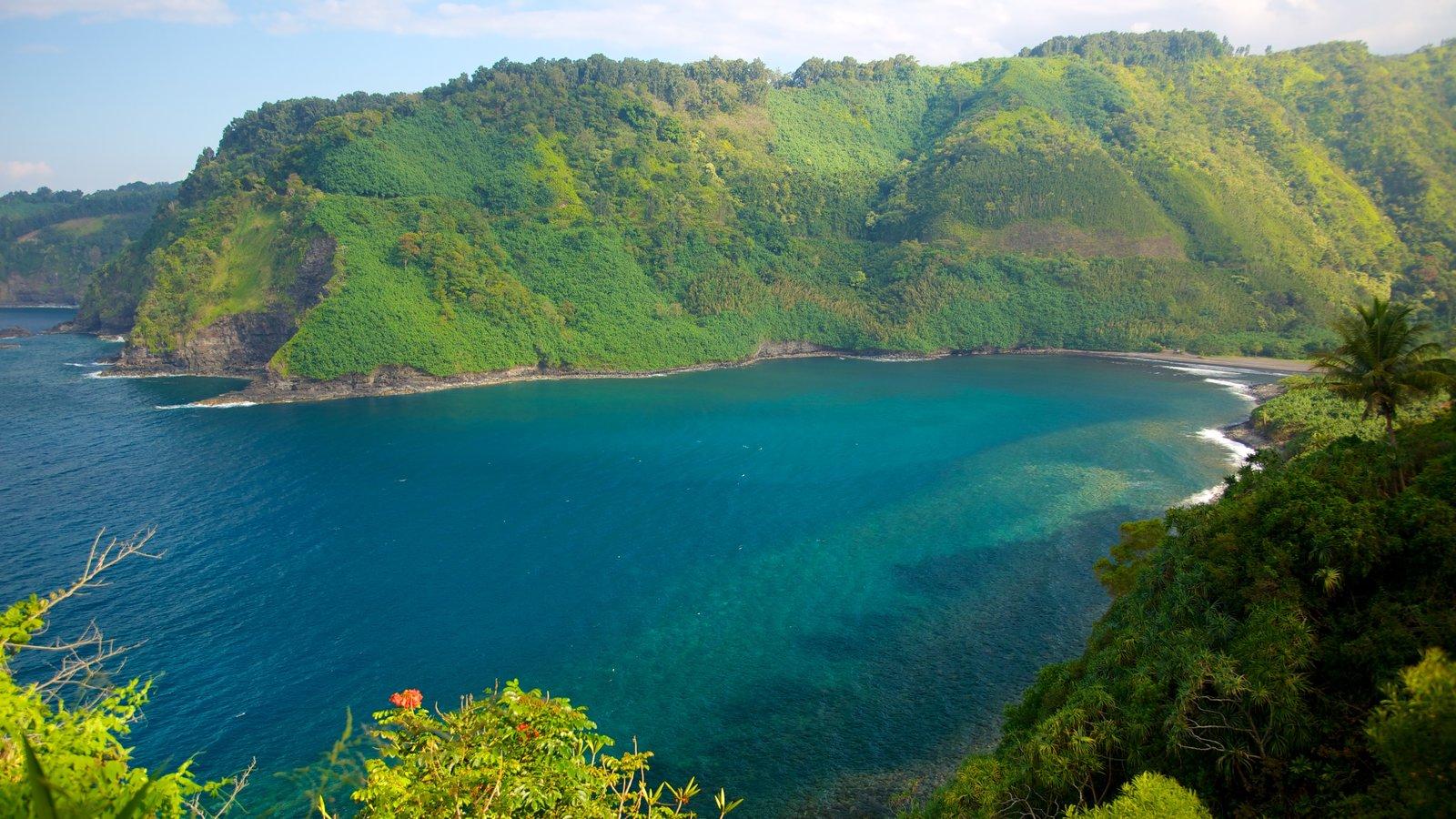 Maui caracterizando montanhas, paisagens e florestas