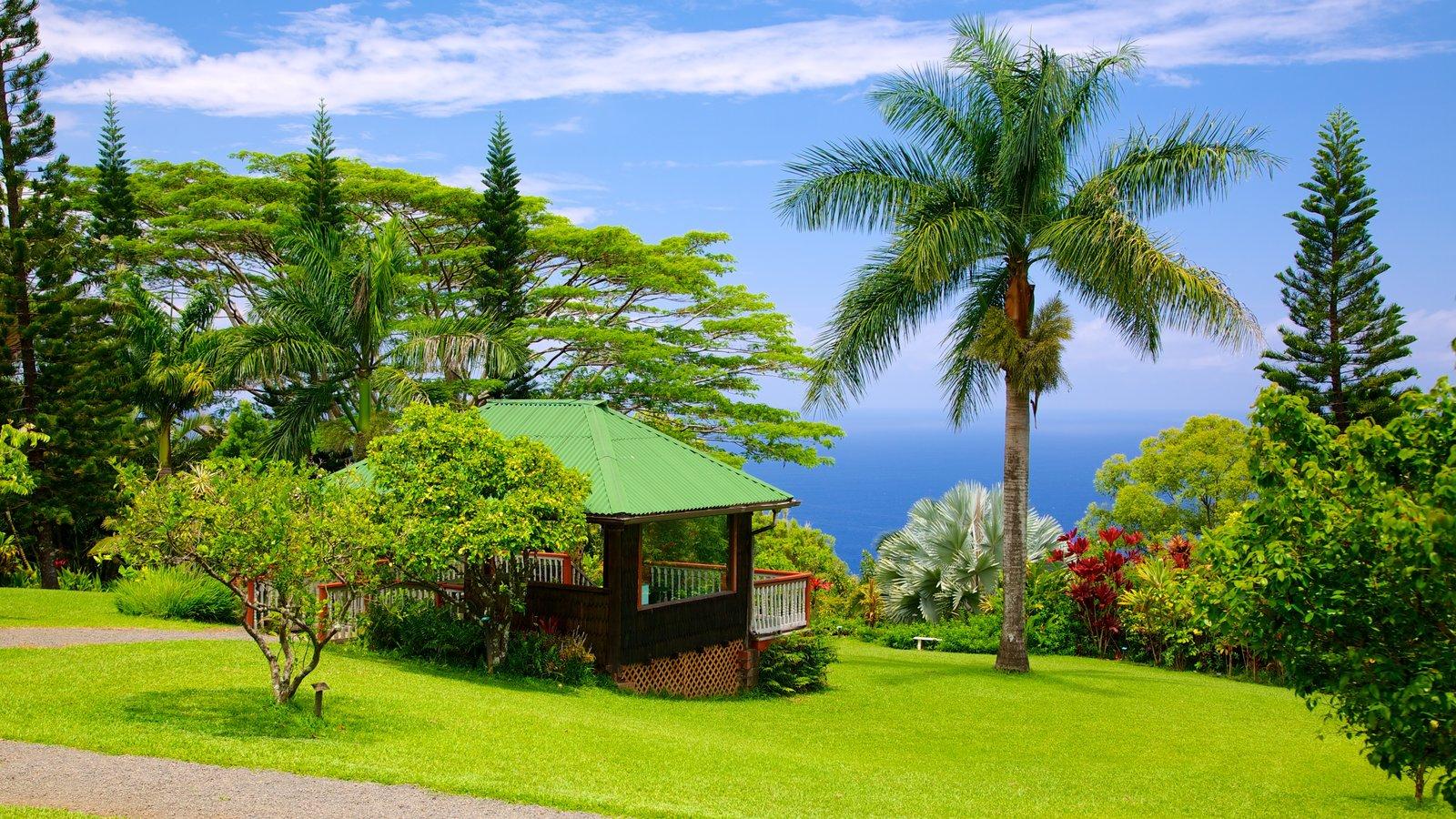 Isla de Maui que incluye escenas tropicales, un jardín y vistas de paisajes