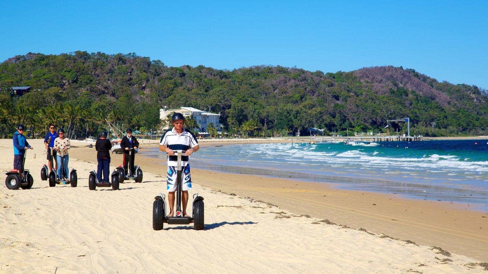 Parque nacional de Isla Moreton ofreciendo una playa y escenas tropicales